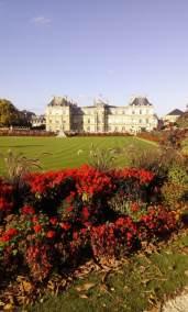 Jardin du Luxembourg - Laura Spoonie