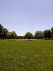Dulwich Park Blue Sky - Laura Spoonie