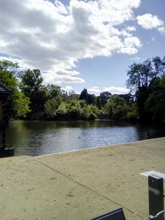 Dulwich Park Bird Pond - Laura Spoonie