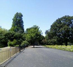 Dulwich Park - Bench Row - Laura Spoonie