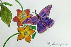 The Brave Butterfly - Laura Spoonie