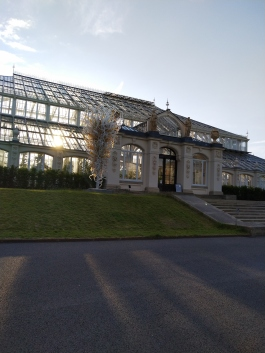 All Clear Glass Green House - Kew Gardens - Laura Spoonie